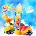 CASSIS MANGUE – FRUIZEE 50ml
